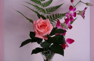 et pour la Saint Valentin, des roses...