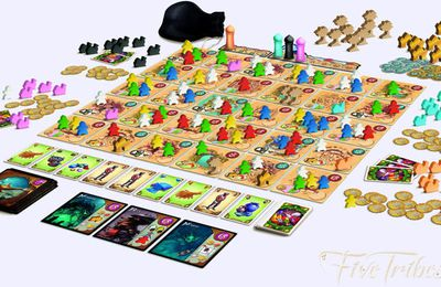Five Tribes de Bruno Cathala