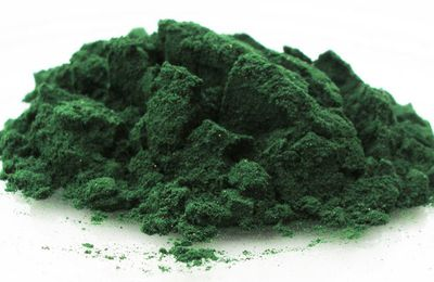 Composition de la spiruline : une mine d'or!
