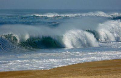 La vague à l'âme