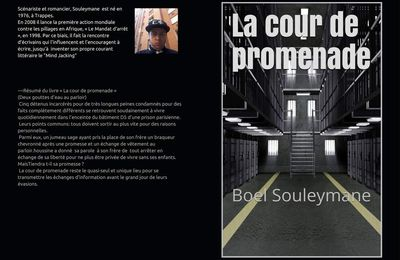 Livre   « La cour de promenade » (Deux gouttes d'eau au parloir) Boel Souleymane