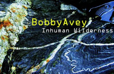Bobby AVEY : «  Inhuman Wilderness »