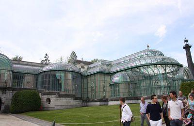 Bruxelles - les serres de Laeken