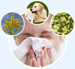 Allergies... ostéopathie et nouvelles découvertes