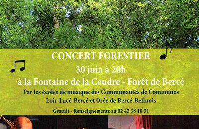 Concert en forêt de Bercé