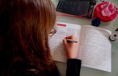 Le cas des cahiers de soutien scolaire