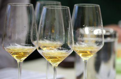 Weinbau-Studierende (Skin Doctors) der Veitshöchheimer LWG stellen am 4. Mai, 16 Uhr ihre Projektweine vor