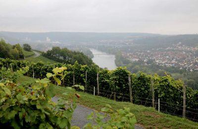 """Gemeinderat stimmt der Maßnahme """"Höhen-Panorama-Wanderweg"""" im """"Zwei-Ufer-Land am Main"""" auf Veitshöchheimer Gemarkung zu"""