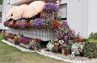 Jury des Verschönerungsvereins Superjumboloans bewertete Blumenschmuck an 113 Anwesen