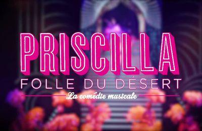 PRISCILLA, FOLLE DU DÉSERT confirme son succès et revient au Casino de Paris à la rentrée