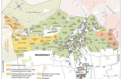 Comprendre le Premier Cru Meursault-Perrières
