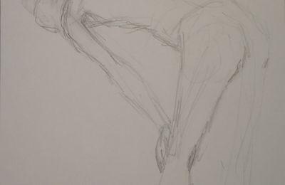 Crayonnage de nus