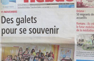 Bourg-lès-Valence, Centenaire de la Grande Guerre, Opération 'les Galets de la Mémoire - Fleurs symboles 14/18 Bleuets et Coquelicots peints par des jeunes scolaires. novembre 2016