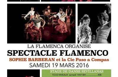 spectacle danse flamenca Volx