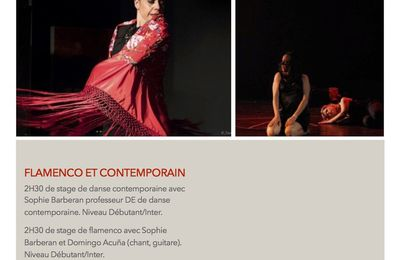 Stage de danse flamenco et contemporain Manosque