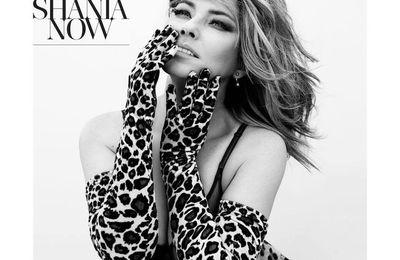 Shania Twain - Swingin' With My Eyes Closed