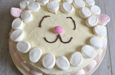 Gâteau chocolat blanc-framboises-noix de coco