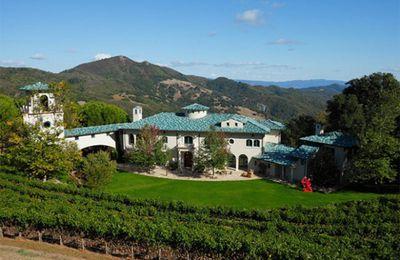 « Château Pontet-Canet rachète le domaine de l'acteur Robin Williams en Californie »