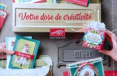 """NOUVEAU CATALOGUE STAMPIN'UP"""