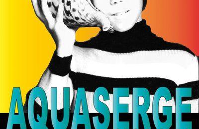 Aquaserge Orchestra en concert