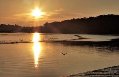 Lever du soleil sur l'Odet