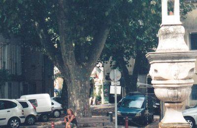 Jeudi 4 septembre 2008 : Plan d'Aups Sainte-Baume