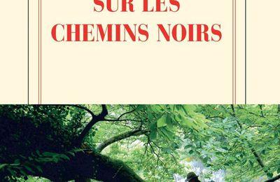 Sur les chemins noirs de Sylvain Tesson