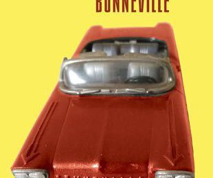 Bonneville de Laurent Saulnier