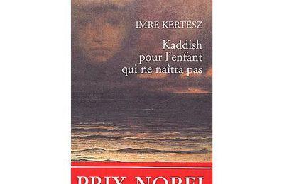 Kaddish pour l'enfant qui ne naîtra pas de Imre Kertész