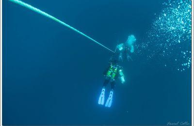 Ostmark, lanceur d'hydravions en eau bleue