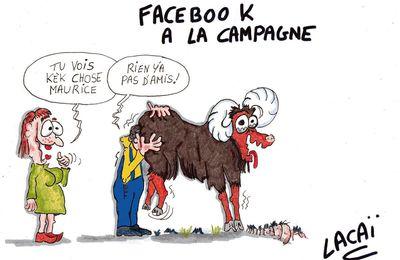 facebook à la campagne,mode d'emploi...