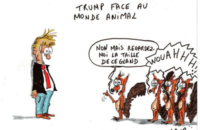 trump face au monde animal...