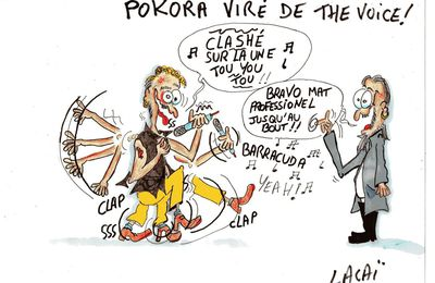 M POKORA viré de the voice...
