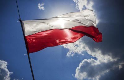 A quoi bon apprendre le polonais?