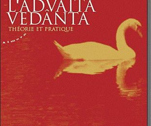 Advaita Vedanta - Dennis waite - Notes 2016 - Introduction
