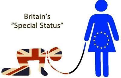 Un obstacle de taille à la concrétisation du Brexit : le parlement britannique devra donner son accord