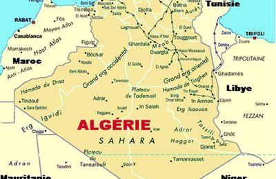 Élection législative en Algérie : l'analyse avant vote du PADS