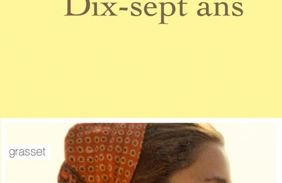 Dix sept ans - Colombe Schneck