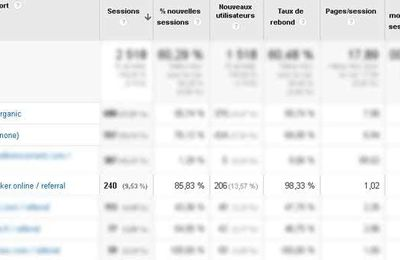 rank-checker.online, un spam de plus sur Analytics