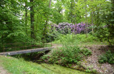 Destruction de la forêt régionale de Montgé en Goële : suite à l'intervention des conseillers  départementaux B.Corneille et M. Margaté, J.J. Barbaux va devoir revoir sa copie !