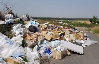 Le conseil départemental devrait enfin nettoyer la décharge illégale de Le Pin/Villevaudé en septembre prochain!