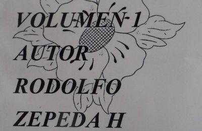 DIBUJO DE ORNATO VOLUMEN 1