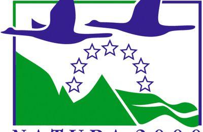 Quand Wippelec pollue une zone Natura 2000 / sur le blog de Romainville Sud