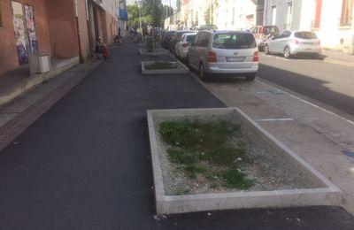 La municipalité a supprimé les arbres de la rue Hoche