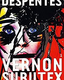 Vernon Subutex 1 Virginie Despentes