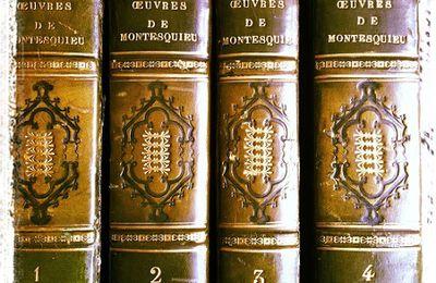 L'éloge des arts et du luxe dans Les Lettres persanes de Montesquieu : une éthique politique et économique des Lumières.