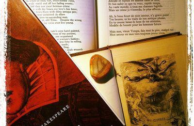 Shakespeare : traduction des Sonnets XVIII, XIX, LXXVI, LXXXVI, CXXVII et CXLIV.