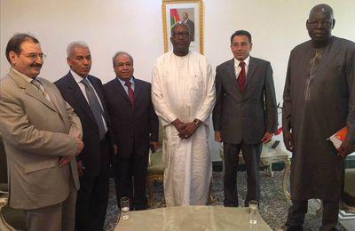 ليبيا تدعو افريقيا للسلام