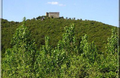 Château de MONTALET - Molières sur Cèze