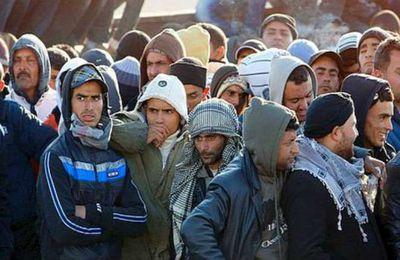 Comment l'INSEE et l'INED manipulent les chiffres de l'immigration.